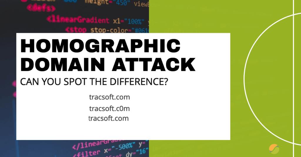 homographic domain attack